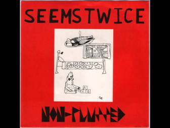 SeemsTwice